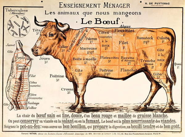 image of a poster Beef: diagram depicting the different cuts of meat (colour litho), French School, (20th century) / Private Collection / © Archives Charmet / Bridgeman Images