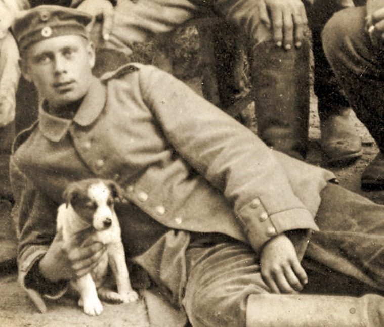 Les Animaux Héros pendant la Première Guerre Mondiale
