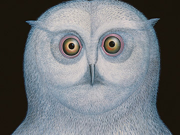 Great White Owl, 1996, Galambos, Tamas / Private Collection / Bridgeman Images
