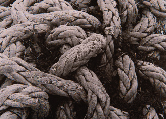 Ropes, John Cooper (b.1939) / Private Collection / © Special Photographers Archive