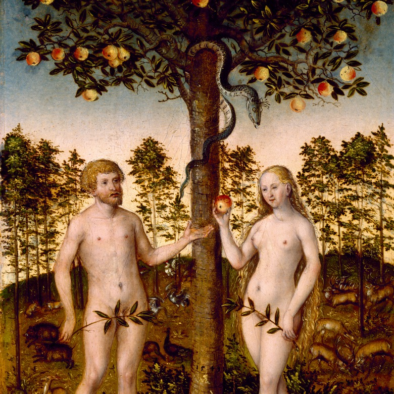 The Fall of Man / Lucas Cranach the Younger / Museum of Fine Arts, Houston / Edith A. and Percy S. Straus Collection / Bridgeman Images