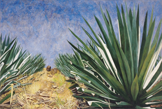 Agaves with Blue Sky, 2004 by Pedro Diego Alvarado