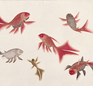 ASC138165 Gold and Silver Fish from 'Drawings of Fishes from Malacca', c. 1805-18 (w/c on paper), Chinese / Royal Asiatic Society, London, UK