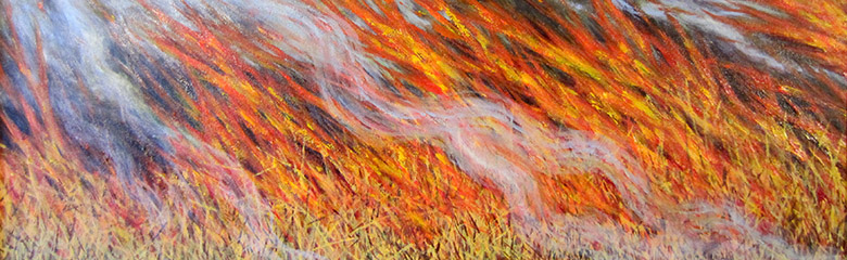 Bushfire Inferno, 2014, Tilly Willis / Private Collection / Bridgeman Images