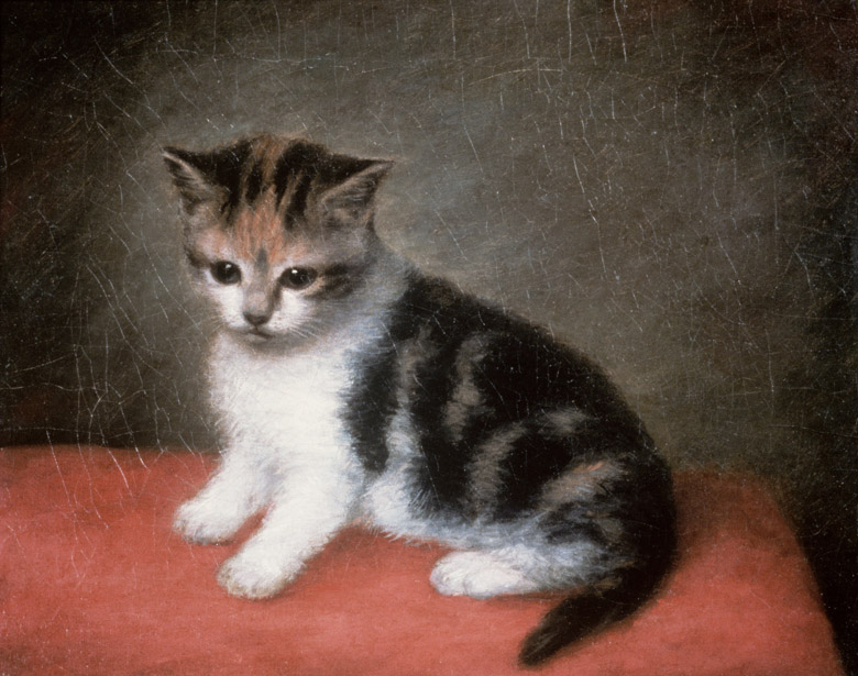 Miss Ann White's Kitten, 1790 by George Stubbs (1724-1806) / Roy Miles Fine Paintings