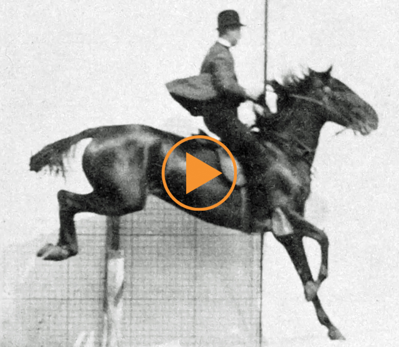 Man and horse jumping a fence, plate 643 from 'Animal Locomotion', 1887 (b/w photo), Muybridge, Eadweard (1830-1904) / Private Collection / The Stapleton Collection