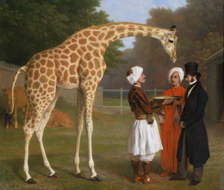 (detail) The Nubian Giraffe, 1827 (oil on canvas) by Jacques-Laurent Agasse/ The Royal Collection © Her Majesty Queen Elizabeth II