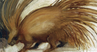 Porcupine, 2008 (pastel on paper) by Lara Scouller