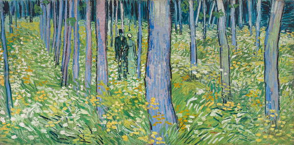 Undergrowth with Two Figures, 1890 (oil on canvas), Gogh, Vincent van (1853-90) / Cincinnati Art Museum, Ohio, USA / Bequest of Mary E. Johnston / Bridgeman Images